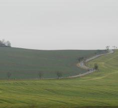 Eine Straße verläuft gewunden durch grüne Wiesen